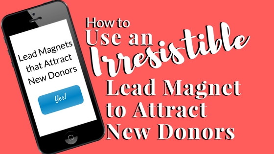 How to Use an Irresistible Lead Magnet to Attract New Donors